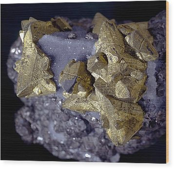 Tetrahedrite Wood Print by Science Photo Library