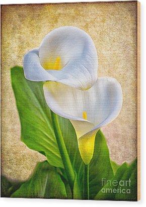 Textured Calla Lilies Wood Print