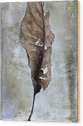 Textured Leaf Wood Print by Bernard Jaubert