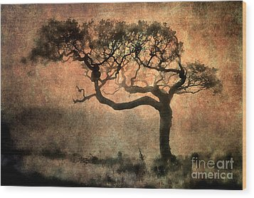 Textured Tree In The Mist Wood Print by Ray Pritchard