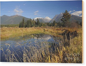 1123a The Cabinet Mountains  Wood Print by Cindy Murphy - NightVisions