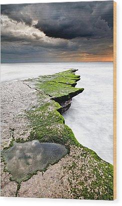 The Green Path Wood Print by Jorge Maia