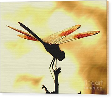 The Light Of Flight Upon The Mosquito Hawk At The Mississippi River In New Orleans Louisiana Wood Print