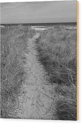 Wood Print featuring the photograph The Path by Glenn DiPaola