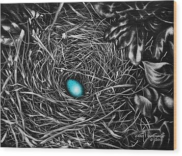The Robin's Egg Wood Print