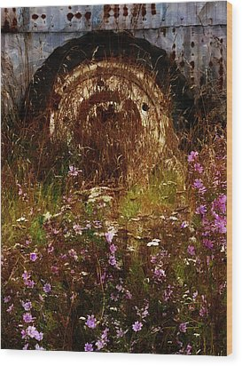 The Spare Wheel  Wood Print by Steve Taylor