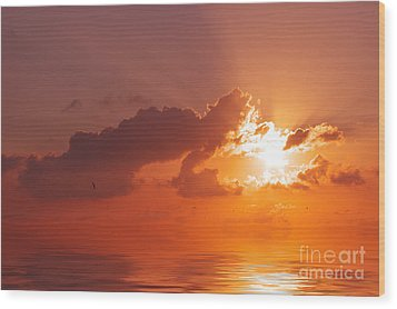 The Sunset Wood Print by Angela Doelling AD DESIGN Photo and PhotoArt