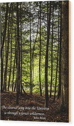 Thru The Trees With John Muir Quote Wood Print by Marilyn Carlyle Greiner