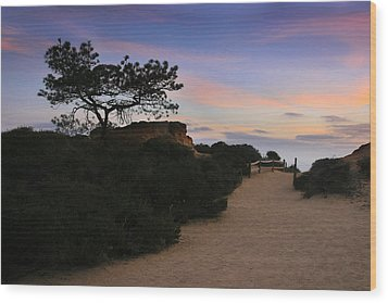 Torrey Pines Trail Wood Print