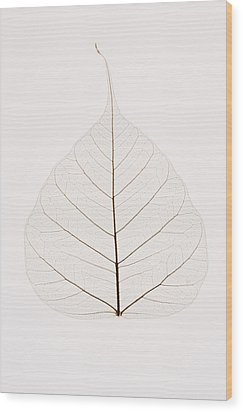Transparent Leaf Wood Print by Kelly Redinger