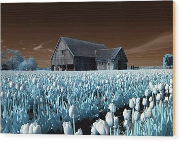Wood Print featuring the photograph Tulip Barn by Rebecca Parker