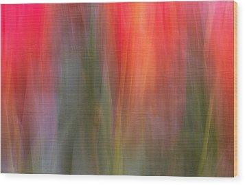 Tulip Waves Wood Print