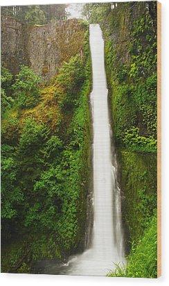 Tunnel Falls  Wood Print by Jeff Swan
