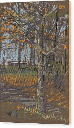 Turning Leaves Wood Print by Donald Maier