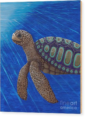 Turtle Painting Bomber Triptych 2 Wood Print by Rebecca Parker