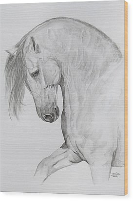 Ungido Iv Wood Print by Janina  Suuronen
