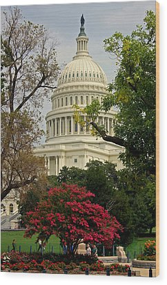 United States Capitol Wood Print by Suzanne Stout