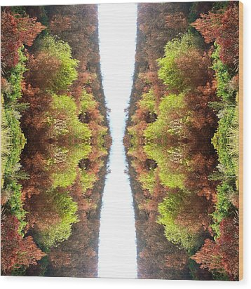 Unnatural 77 Wood Print by Giovanni Cafagna