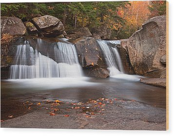 Upper Screw Auger Falls Wood Print by Patrick Downey