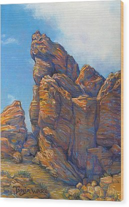 Valley Of Fire Wood Print by Tanja Ware