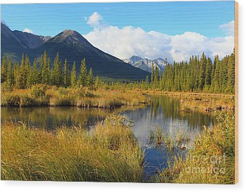 Vermillion Lakes Banff Alberta Wood Print