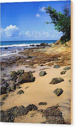 Vieques Beach Wood Print by Thomas R Fletcher