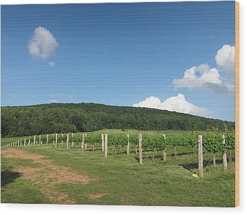 Vineyards In Va - 12127 Wood Print by DC Photographer