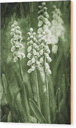 Vintage Flower Background Wood Print by Jaroslaw Grudzinski