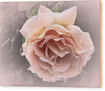 Vintage Rose No. 3 Wood Print by Richard Cummings