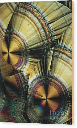 Vitamin C Crystals Wood Print by Claude Nuridsany and Marie Perennou
