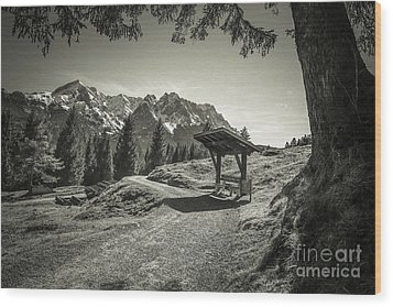 walking in the Alps - bw Wood Print by Hannes Cmarits
