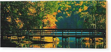 Wood Print featuring the photograph Walkway by Steve Godleski
