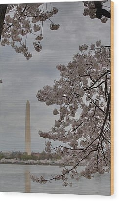 Washington Monument - Cherry Blossoms - Washington Dc - 011315 Wood Print by DC Photographer
