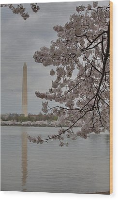 Washington Monument - Cherry Blossoms - Washington Dc - 011316 Wood Print by DC Photographer