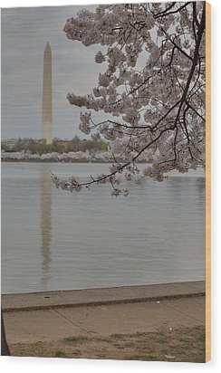 Washington Monument - Cherry Blossoms - Washington Dc - 011317 Wood Print by DC Photographer