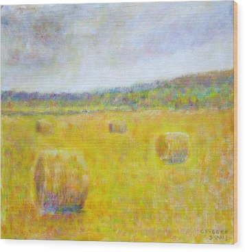 Wheat Bales At Harvest Wood Print