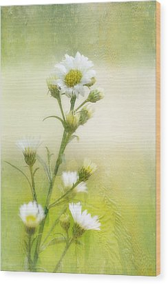 Wild Flowers Wood Print by Joan Bertucci