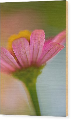 Wood Print featuring the photograph Wildflower - Bali by Matthew Onheiber