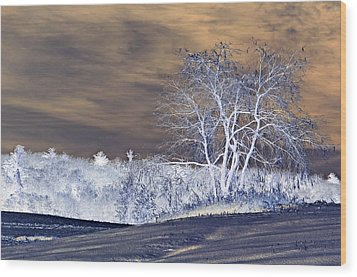 Winter Blues Wood Print by Susan Leggett