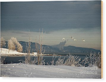 Winter Day Wood Print by Randi Grace Nilsberg
