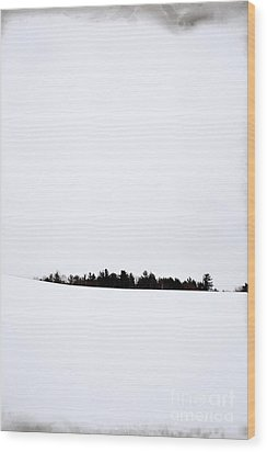 Winter Minimalism Wood Print by Edward Fielding
