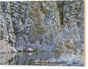 Winter Scene Wood Print by Pat Now