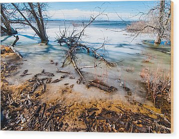 Winter Shore At Barr Lake Wood Print by Tom Potter