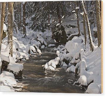 Wood Print featuring the photograph Winter Stream Win 67 by G L Sarti