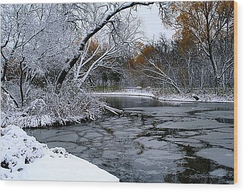 Wood Print featuring the photograph Winter Wonderland by Larry Trupp