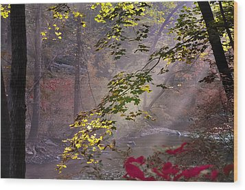 Wissahickon Autumn Wood Print by Bill Cannon