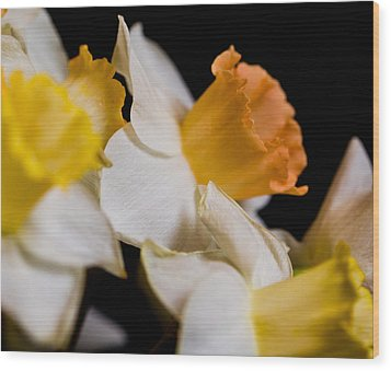 Yellow Daffodils Wood Print by John Holloway
