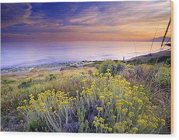 Yellow Flowers At The Sea Wood Print by Guido Montanes Castillo