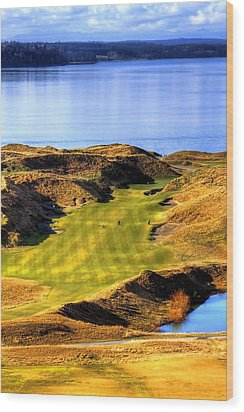 10th Hole At Chambers Bay Wood Print by David Patterson