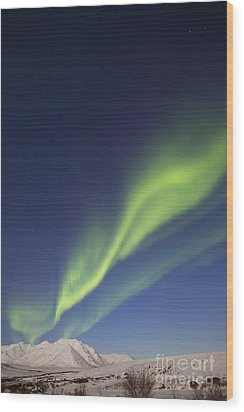 Aurora Borealis With Moonlight Wood Print by Joseph Bradley